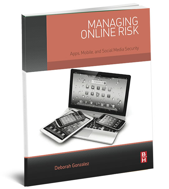 Managing Online Risk book cover